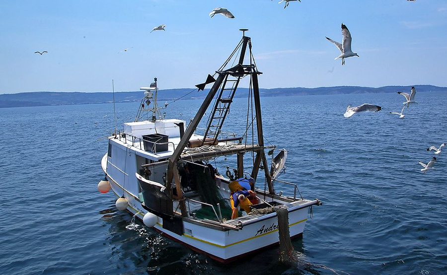 sloveski ribiči v Piranskem zalivu