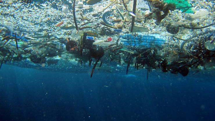 plastika v morju, ki uničuje floro in favno morja in tudi živali v njem