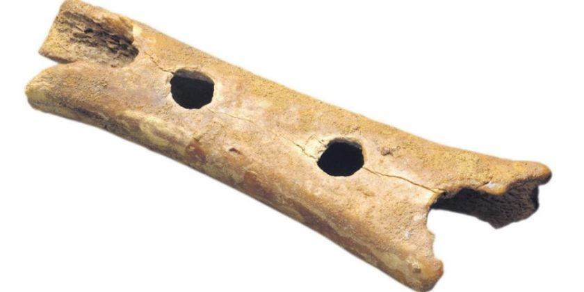 piščal ki je stara več kot 200.000 leti in je izstopala v kamneni dobi in jo zdaj hrani