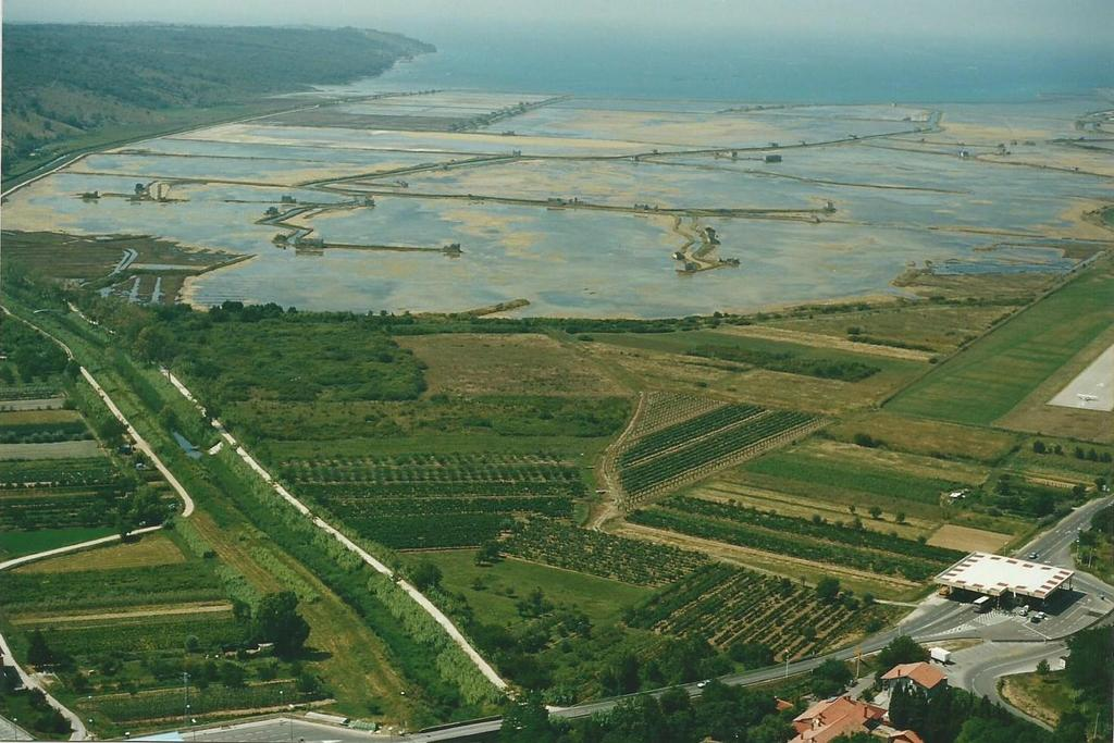 Pogled na Sečoveljske soline z okolico