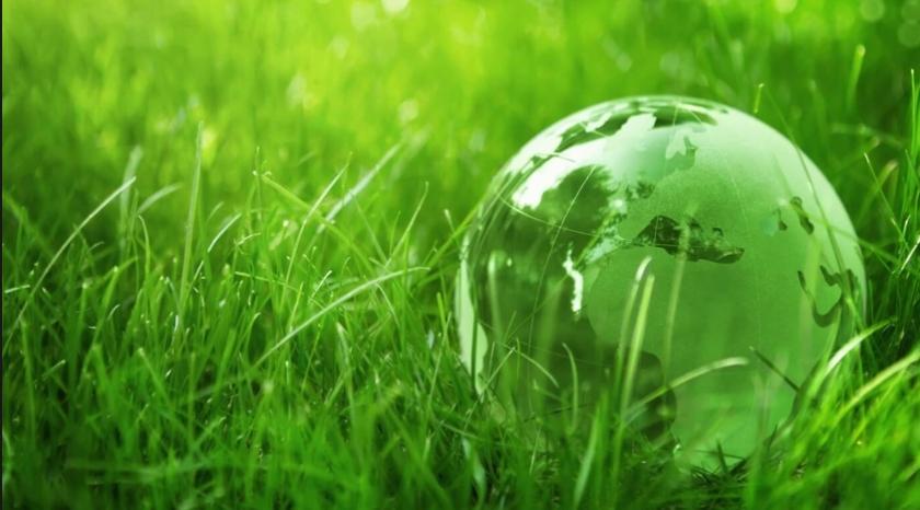 zelena prihodnost -  ponazoritvena fotografija