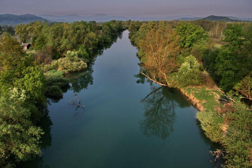 Reka Ljubljanica: Vir: Krajinski park Ljubljansko Barje