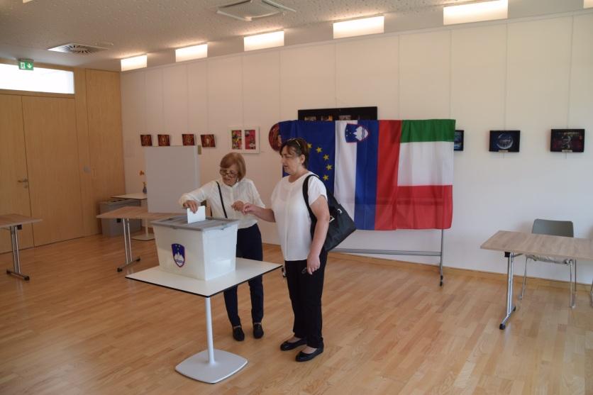 Volitve v Evropski parlament 2019 - volišče